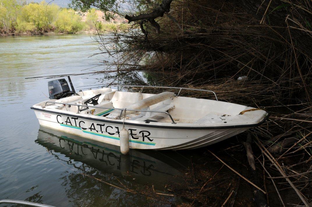 мотор для лодка catfish